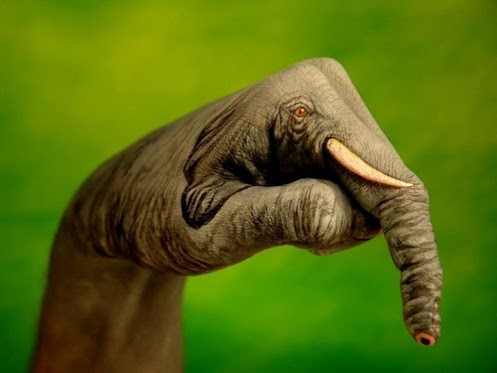 hand-paint-elephant-wallpaper