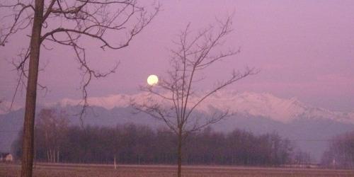 ieri, all'alba la Luna tramonta, sì i colori sono così.