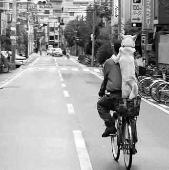 cane-bici