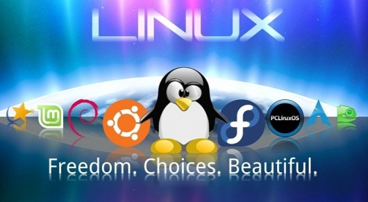 Linux-vs-Windows-Internet-Battle-No-Longer-Exists-Because-Linux-is-Winning
