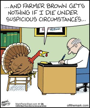 thanksgiving humor off the mark