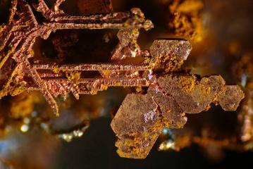 nikon-small-world-copper-crystals