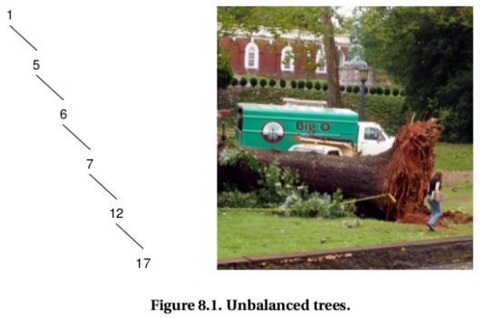 umba-tree
